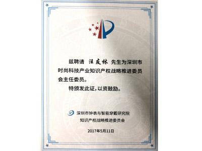 森丰真空镀膜厂荣誉-战略推进委员会主任委员